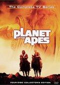 人猿星球 1974 第一季 海报