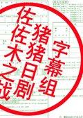 佐佐木之战 海报