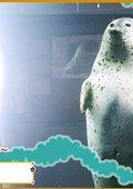 奇迹动物园2007 海报